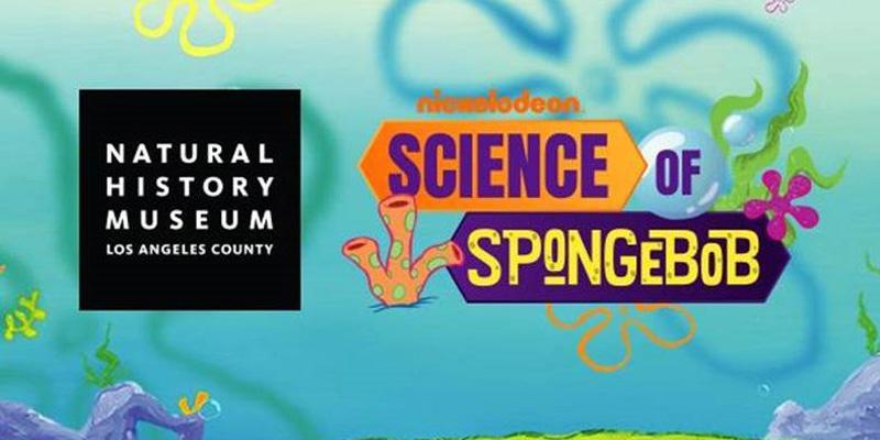 science of spongebob