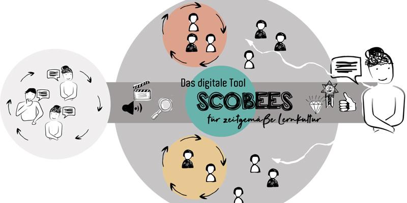Lehrer-Talk: #26 Neue Lernplattform revolutioniert verstaubte Pädagogik. Geht das? (mit Lena Spak von Scobees)